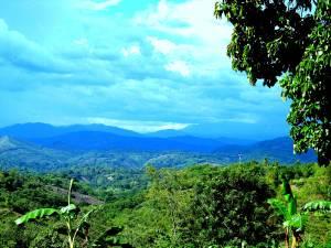 View from the school in El Progresso